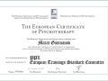 European Certificate for Psychotherapy (ECP)